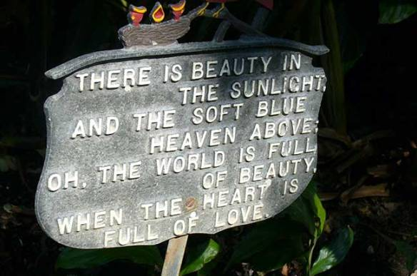 The World Is Full Of Beauty
