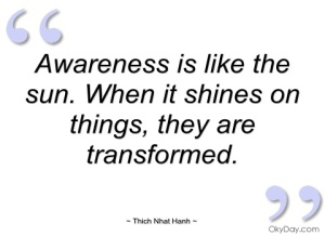 Awareness is like the sun. When it shines on things, they are transformed. ~Thich Nhat Hanh